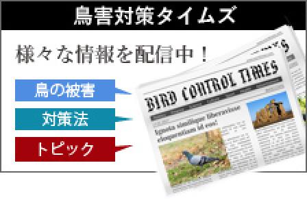 birds control time