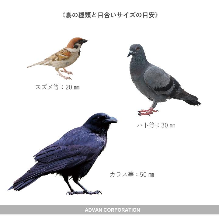 対象の鳥の大きさで適合サイズを選びます