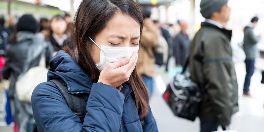 川崎で発生したオウム病  その驚きの感染経路とは!